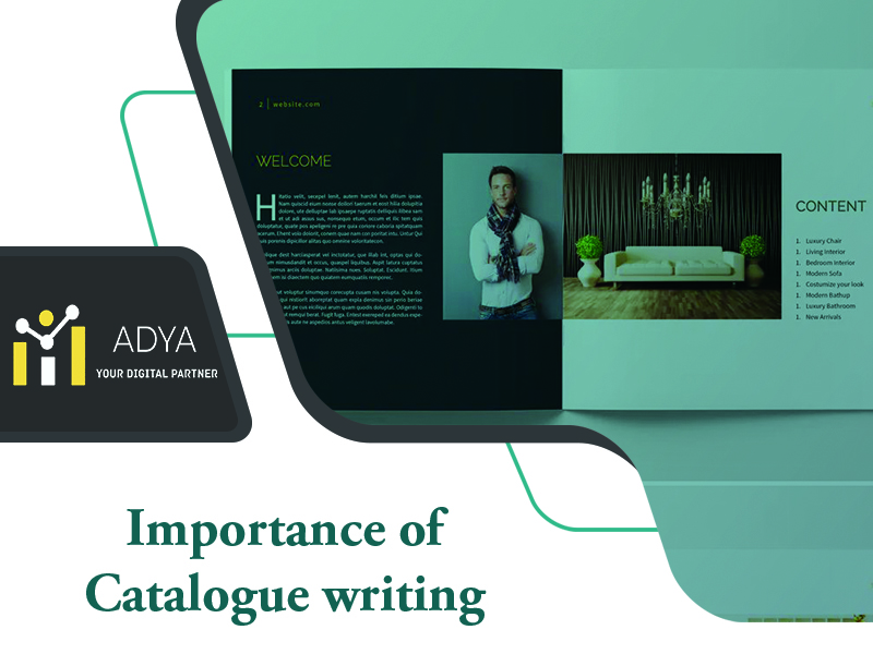 Catalogue writing